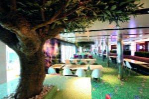 Fähre Fjordline Oasis Garden Cafe