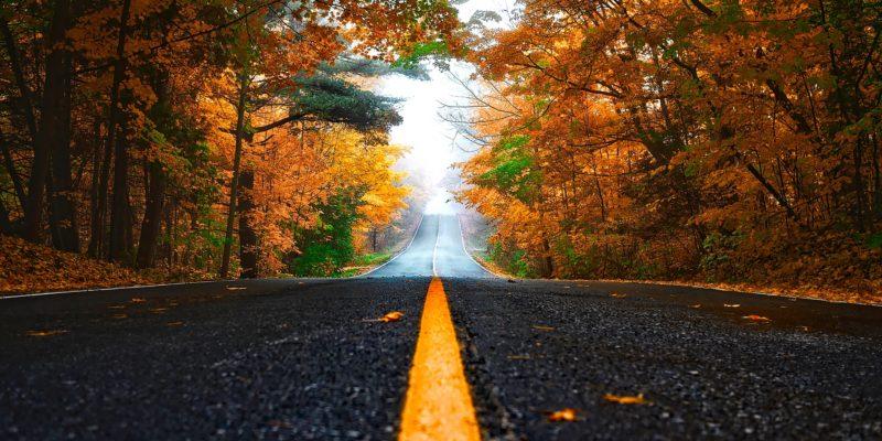 Herbst_Strasse